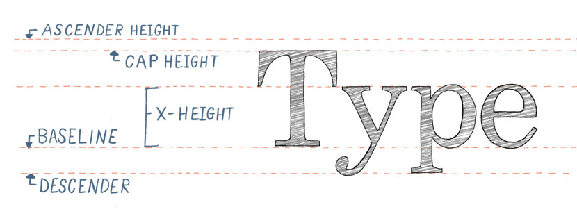 Terminology for Type and Lettering - Ascender Cap Height Baseline