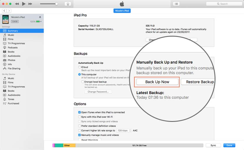 How to manually run an iTunes Backup for your iPad